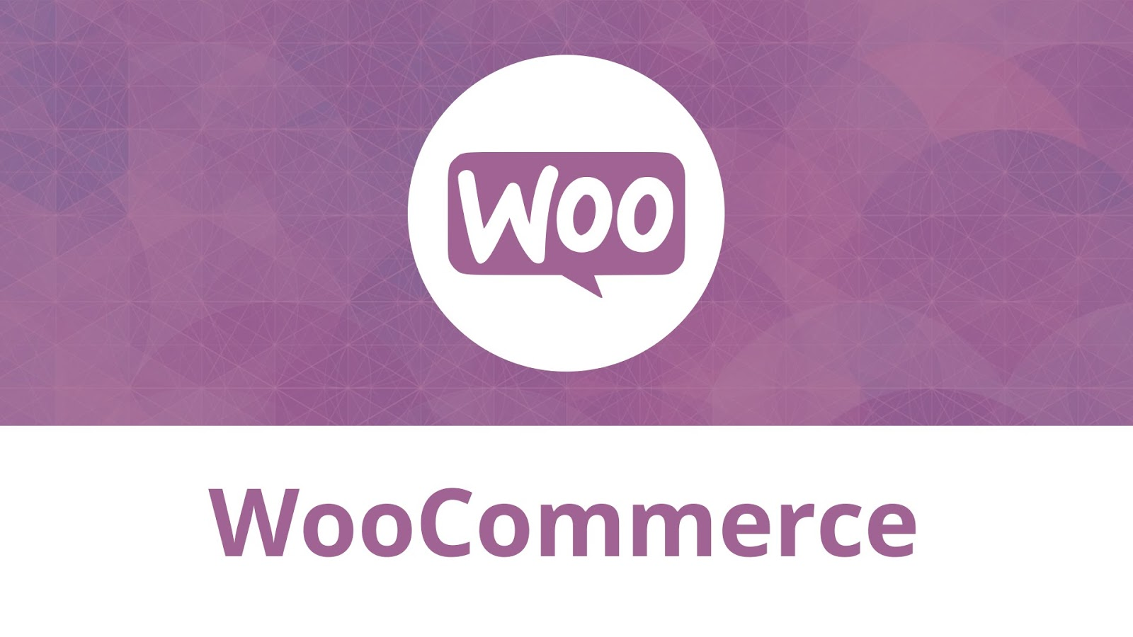 28% of online stores enjoy the features WooCommerce