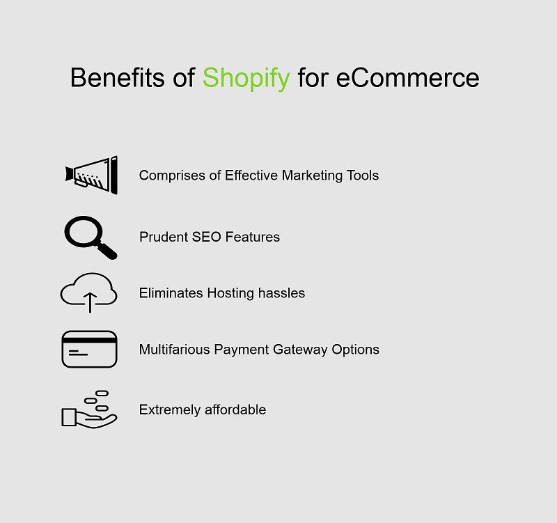 review the different Shopify theme design options