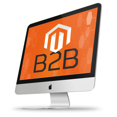 Best Magento 2 Modules for B2B