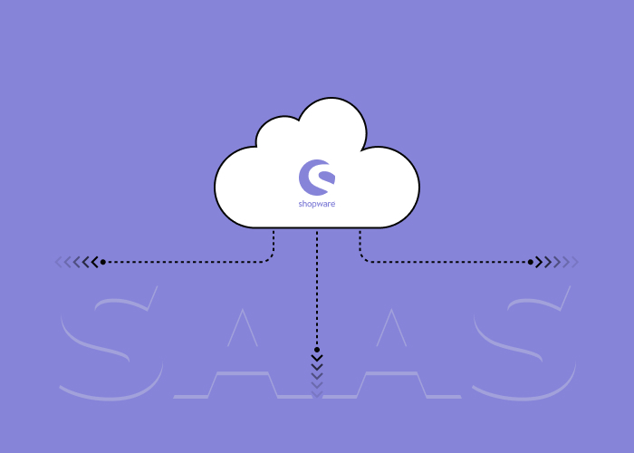 Shopware SaaS - Innovation-Driven Business Success